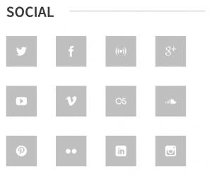 The WPlook Social widget.