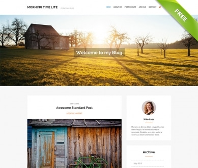 free-wordpress-theme-demo