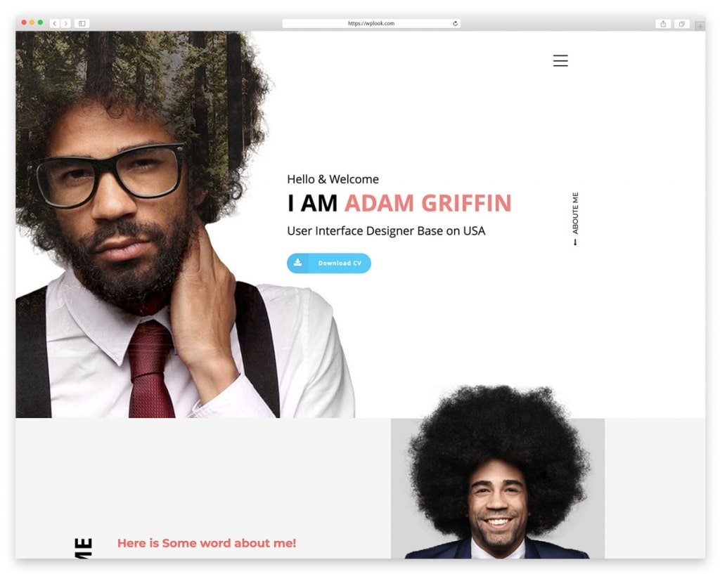 Best Resume Website Templates For Online Cv Wplook Themes