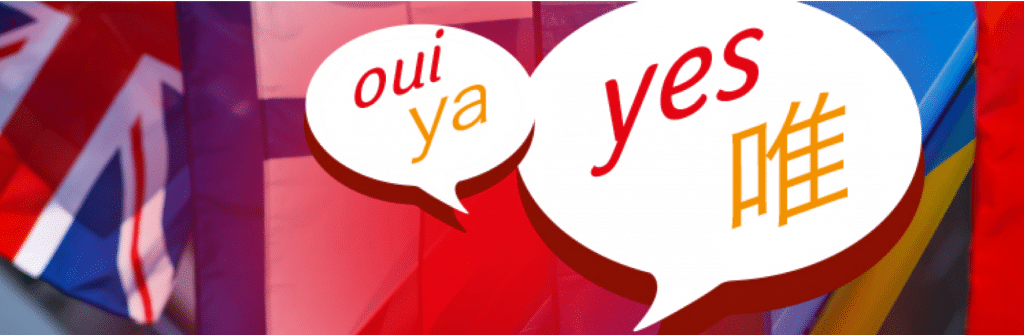 xili-language - WordPress Translation Plugin