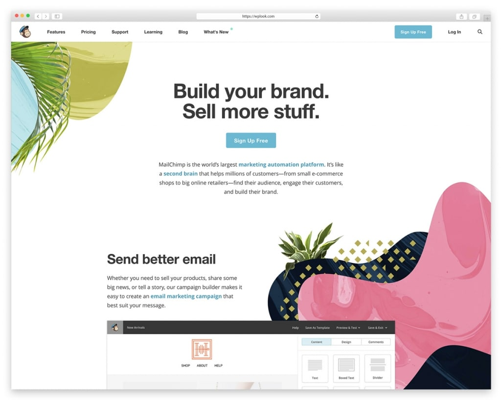 9 best email newsletter and marketing tools wplook themes