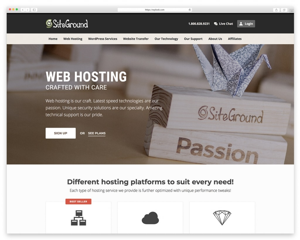 Site Ground Web Hosting
