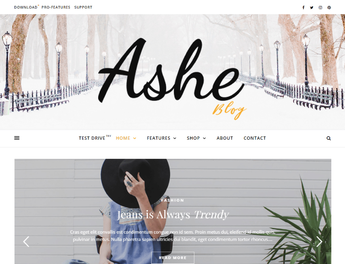 Ashe - Free WordPress Blog Theme