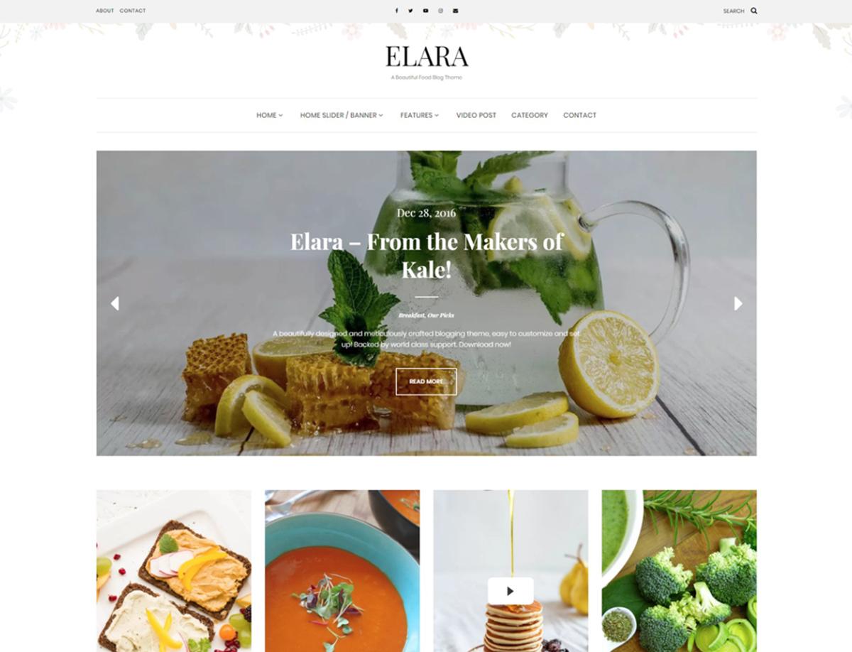 Elara - Free WordPress Theme