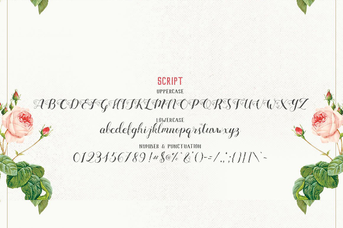 Mightype Free Handlettered Scrip